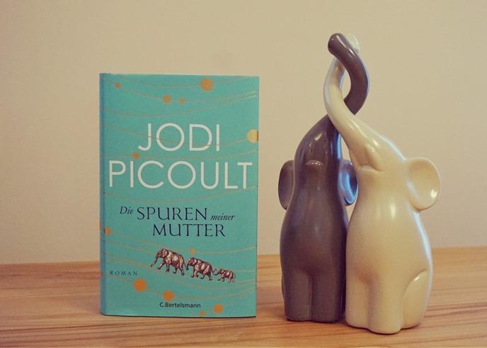 Rezension: Die Spuren meiner Mutter von Jodi Picoult