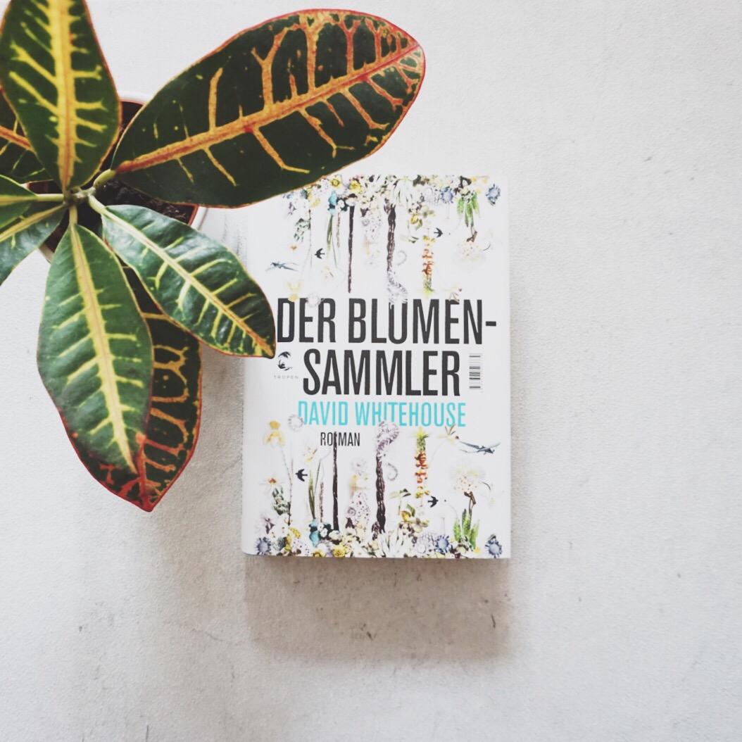 Rezension: Der Blumensammler von David Whitehouse