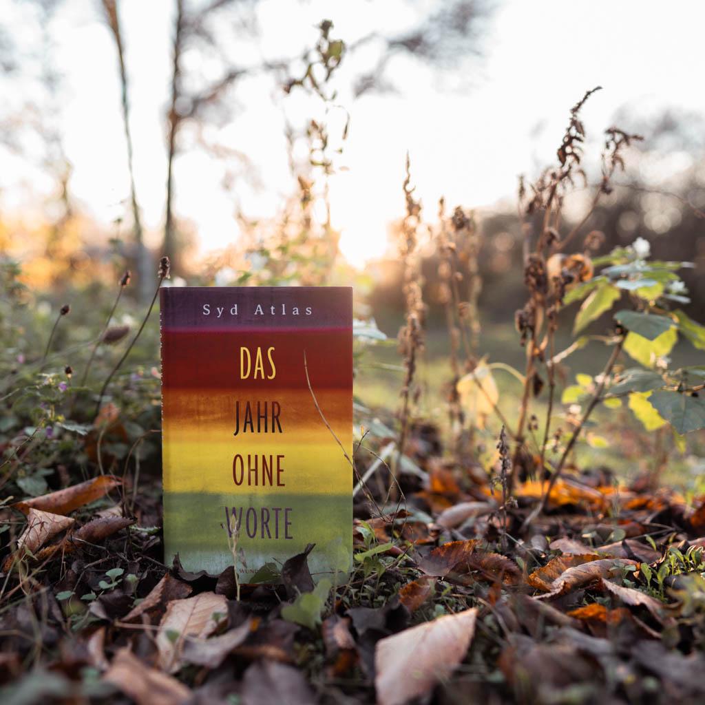 """Ein paar Gedanken zu """"Das Jahr ohne Worte"""" von Syd Atlas"""